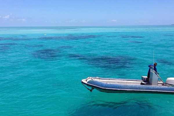 【聆听大堡礁的呼吸-澳凯翡翠岛住宿+双礁深度9日】
