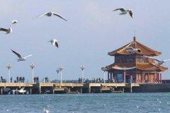 春节青岛旅游攻略