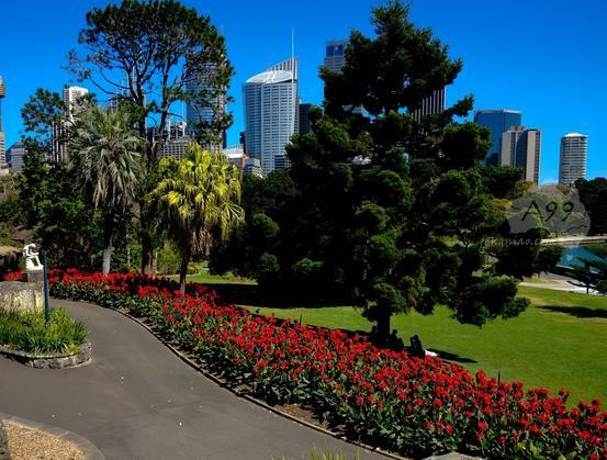 皇家植物园