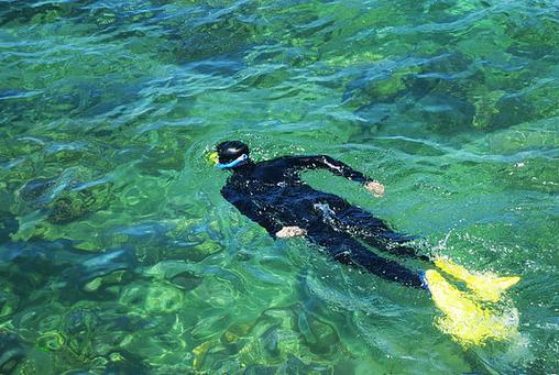 凯恩斯潜水中心