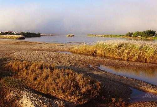 白雾笼罩的河