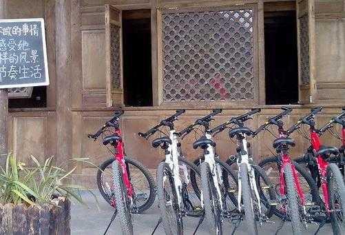 樱花谷骑单车