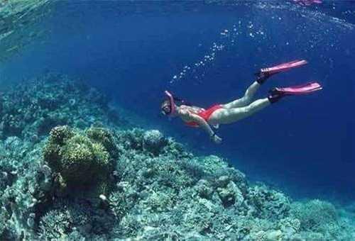 涠洲岛潜水