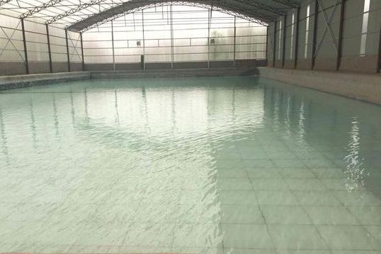 高林游泳馆