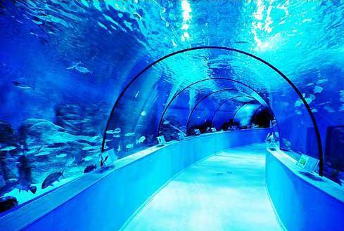 龙门海洋馆