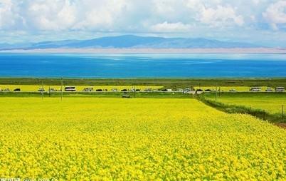 青海湖概况