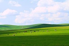 呼伦贝尔草原四季天气怎么样?