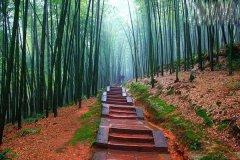 四川长宁蜀南竹海旅游有什么好玩的