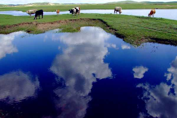 【超值内蒙古】内蒙古锡林郭勒 中国最美小城镇多伦草原 游牧越野三日游