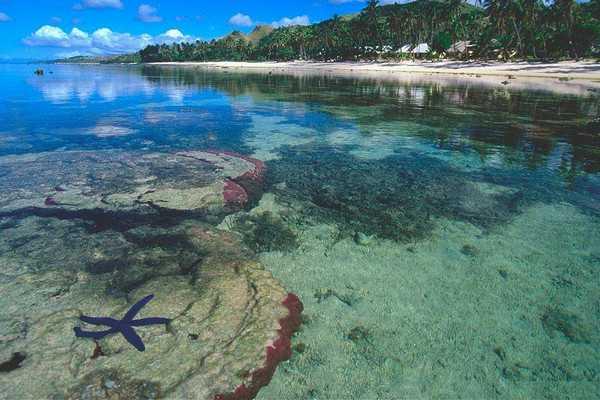【斐济5晚8天自助游】索娜萨里酒店 、香港往返