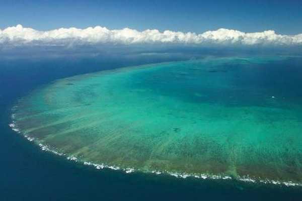 【澳新凯墨12日】雨林与海洋的对话、王者大堡礁