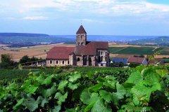 法国游记―百里香槟路下