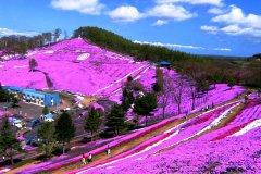 北海道旅游攻略-北海道天气如何