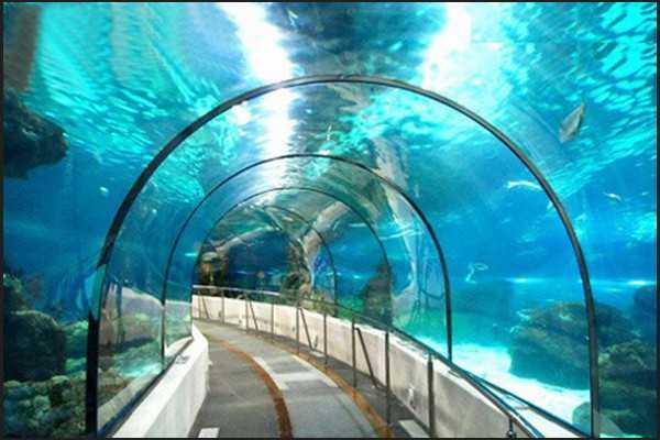 新加坡海底世界