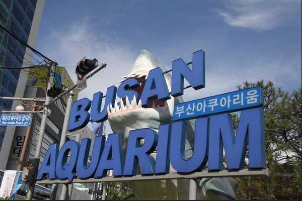 釜山水族馆