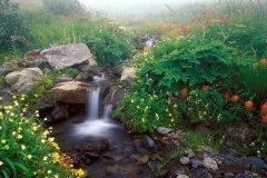 南江大峡谷旅游攻略-南江大峡谷有什么好玩的