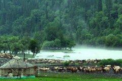 伊犁州旅游什么季节去景色最好
