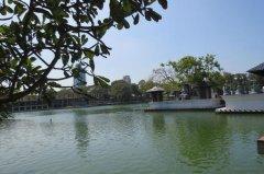 斯里兰卡旅游攻略-斯里兰卡有什么好玩的