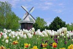 春节荷兰旅游攻略-好玩的景点赏析