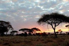 肯尼亚旅游签证多少钱-肯尼亚旅游机票多少钱