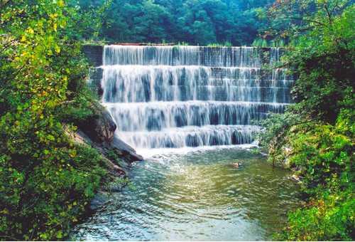 啊瀑布森林浴