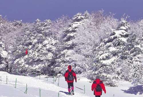汉拿山徒步旅行
