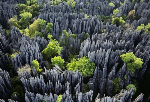 贝马拉哈国家公园